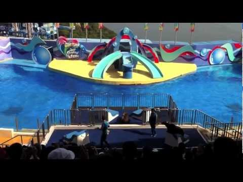 Hong Kong Ocean Park Dolphin and Sea Lion Show!! June 7, 2012
