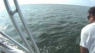 Tarpon Florida Keys Part 1