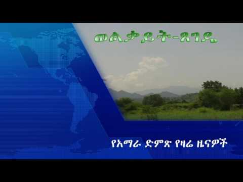 Voice Of Amhara Daily Ethiopian News March 28, 2017