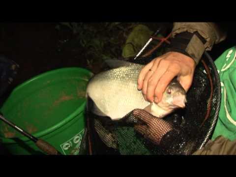 Водохранилище ночная рыбалка лещ