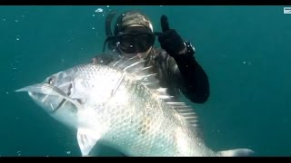 Spearfishing in South Africa with ITZTV - Pescando in Sudafrica in apnea