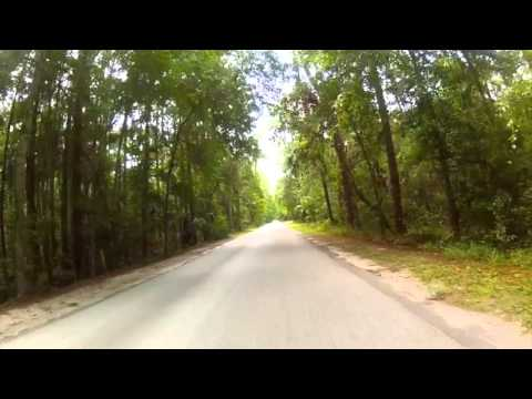 Highlands Hammock State Park Cycling
