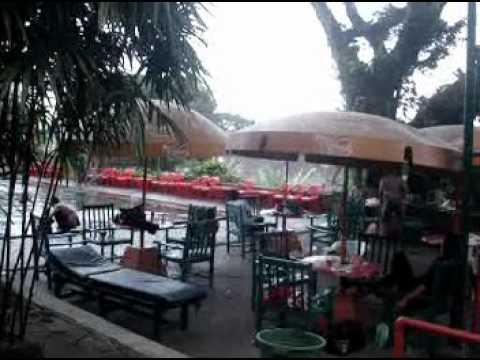 Bunga Orgen Tunggal Lampung Timur.mpg video