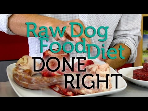 How To Do the Raw Dog Food Diet Right
