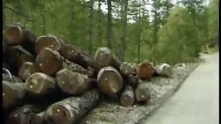 GLORIT La pavimentazione naturale in terra stabilizzata posata con il fresato