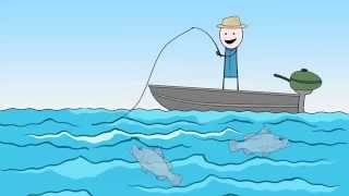 download lagu Barra Basics Online Fishing Course gratis