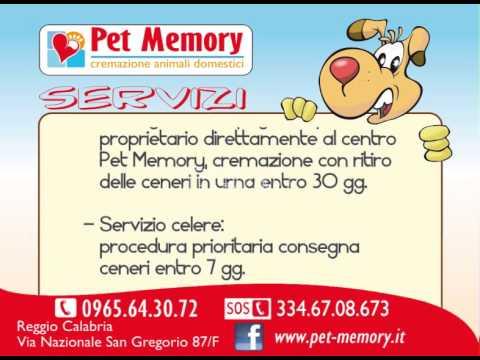 Spot Pet Memory –  Reggio Calabria