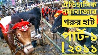 Qurbani EiD In Dhaka, Bangladesh 2011 - HD  - Oitehashik noyabazar.