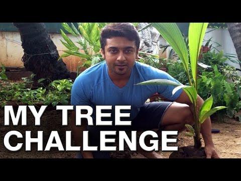 Suriya Challenges Mahesh Babu Aamir Khan Sudeep - My Tree Challenge...