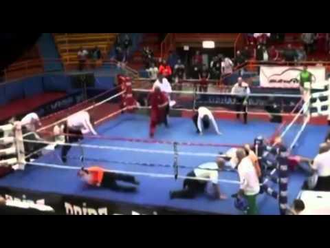 Boxeador croata
