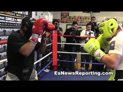 big news floyd mayweather vs canelo alvarez press tour info - EsNews Boxing