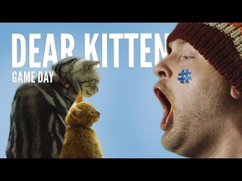 Dear Kitten: Regarding the Big Game (TEASER) – Purina® Friskies