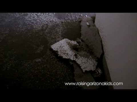 Raising Arizona Kids Magazine: Office Flood Part 3
