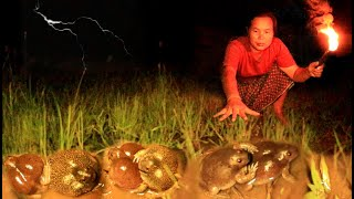 survival in the rainforest - finding bull frog & cook for dog with woman - Eating delicious HD
