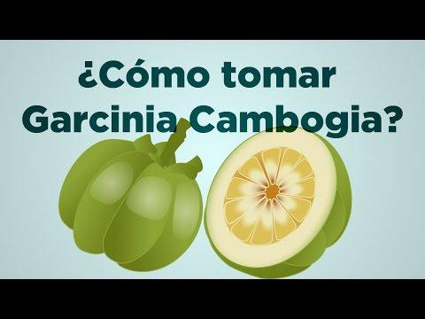 Cómo tomar Garcinia Cambogia para perder el apetito y bajar de peso