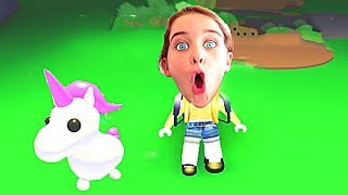 WHICH NORRIS NUT FINDS THE RAREST PET in Roblox Gaming w/ The Norris Nuts