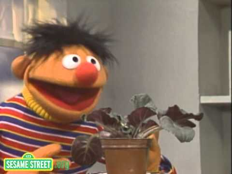Sesame Street - I Have A Little Plant