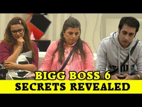Delnaaz, Rajeev, Aashka's DARK SECRETS out on Bigg Boss 6