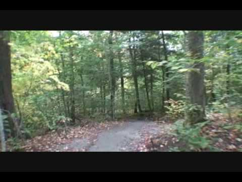 Algonquin Provincial Park October 1 2009 Hardwood Music Part 1