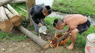 Dế Mèn Phiêu Lưu Ký - Món Ăn Cực Ngon Và Cái Kết Cho Việc Ăn Tham