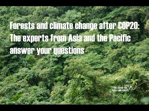 Forests and climate change after COP20: The experts from Asia and the Pacific answer your questions.