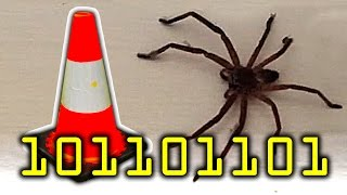 Million Dollar Giant Spider House Mystery Cone & Fail On YouTube Thanks!