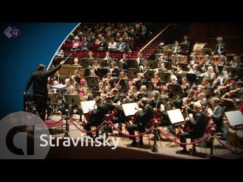 Petrouchka  (Concertgebouworkest, dir. Andris Nelsons)