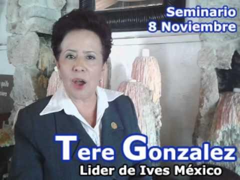TereGonzalez Seminario 8 de Noviembre 2014 toluca