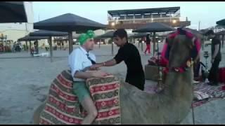 Samiraldo ve Deve - MARAGLI VIDEO