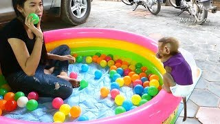 Awesome Dodo So Happy To Get Big Gift 100 Balls And A Big Pool