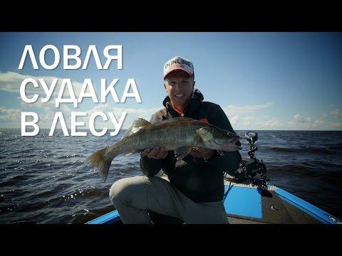 рыбалка летом на рыбинке
