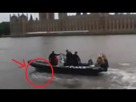 Динамо иллюзионист разоблачение фокуса хождение по воде