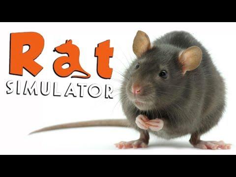 KILLER RAT!!! - Rat Simulator