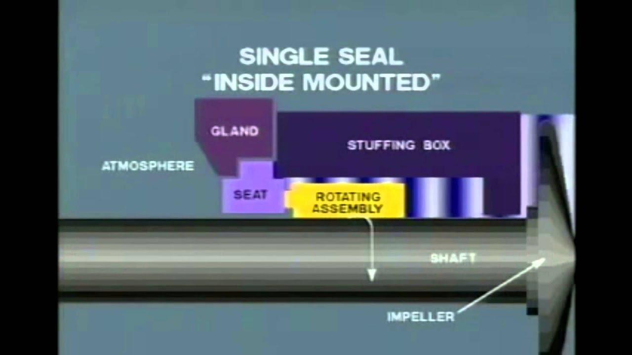Mechanical Seal Working Mechanical Seals