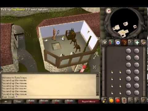 Runescape 2007 Agility Guide 50-60k an Hour!! (Toy Mice Method)