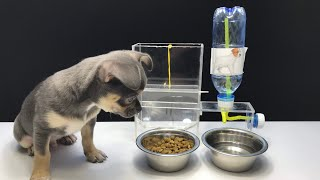 How to Make Amazing Puppy Dog Food Dispenser-Aqua Dispenser