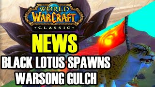 WoW Classic News: Changes to Black Lotuses and WSG | Blizzcon 2020 Canceled