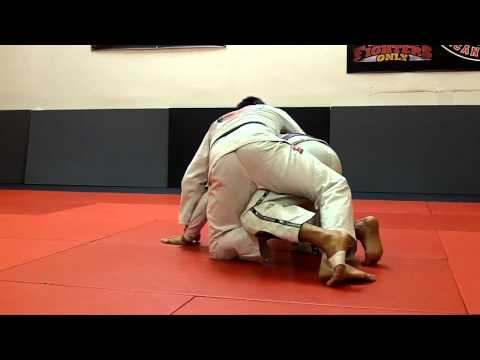 Taking The Back From Butterfly Guard - BJJ Image 1