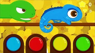 Baby Play 🐛 Learn About Animals, How To Get Food ! Fun Educational Kids Games