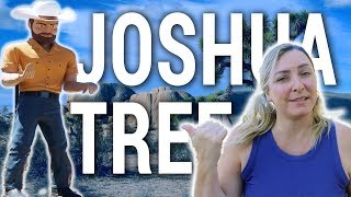 THINGS TO DO IN JOSHUA TREE CALIFORNIA | Travel Snacks