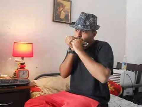 Border-Sandese aate hai in Harmonica by Rahul Raman