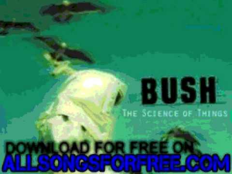 Bush - Spacetravel