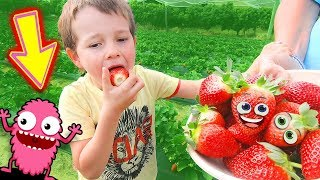 STRAWBERRY PICKING Treasure Hunt for Kids - Gezinsvriendelijk Fruit Picking Farm