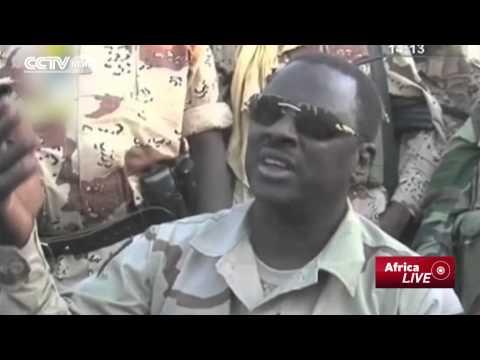 War on Boko Haram: Chadian Forces Kill 'Over 200' Boko Haram Militants