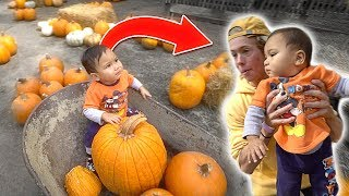Pumpkin Shopping with Tanner Fox!