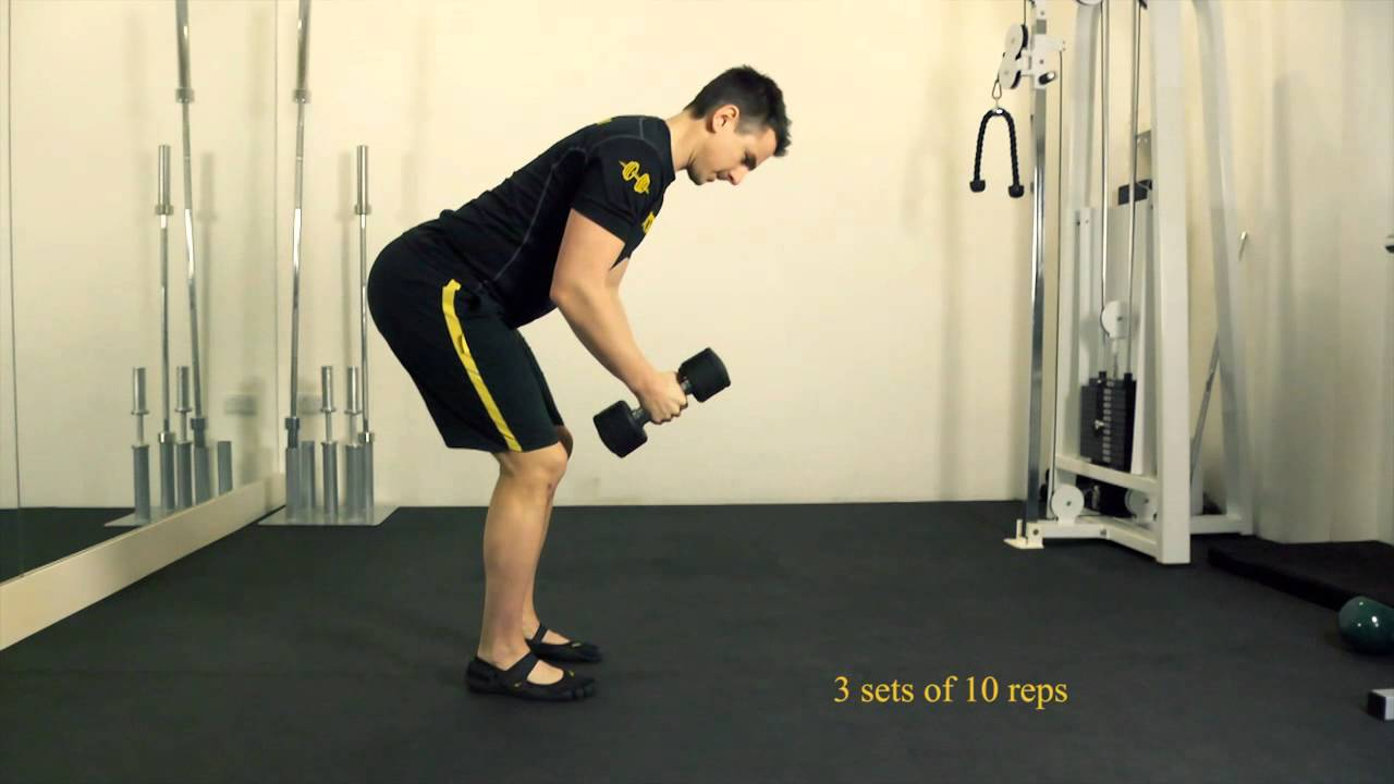 Seated Reverse Dumbbell Fly Bent Over Dumbbell Reverse Fly