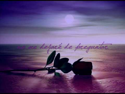 Marco Antonio Solis - Donde Estara Mi Primavera (lyrics)