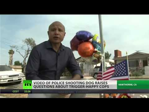 Dog shooting shows police militarism