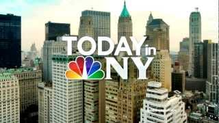 WNBC: Today in New York Open (2012-Present)