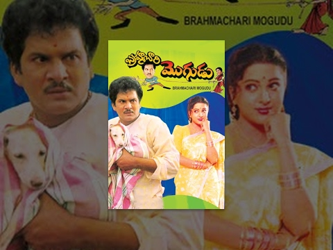 Brahmachari Mogudu Telugu Full Length Comedy Movie || బ్రహ్మచారి మొగుడు సినిమా || Rajendraprasad video